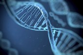 Is Your Personality Genetic?
