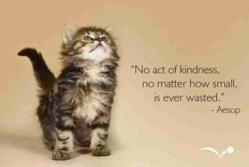 A Random Act of Kindness