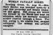 Woman Fatally Gored