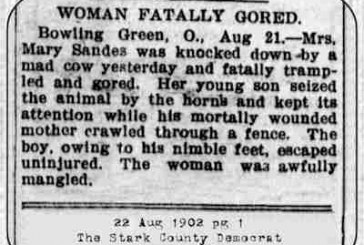 Woman Fatally Gored